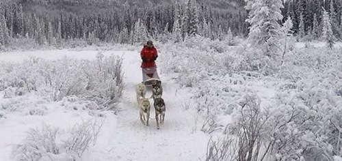 Image Holiday season closure